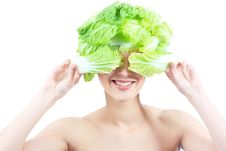 Free Cabbage Royalty Free Stock Photo - 14919555
