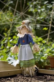 Free Scarecrow In A Garden Vegetable Plot Royalty Free Stock Photography - 14920077