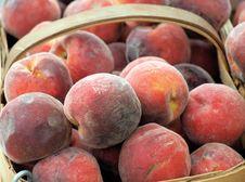 Free Peaches Stock Photos - 14920743