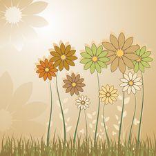 Free Flowers Royalty Free Stock Photo - 14922625