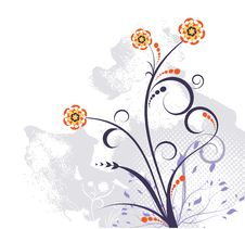 Free Floral Design Royalty Free Stock Image - 14922716