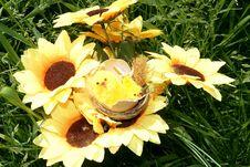 Nest On Flowers Stock Photos