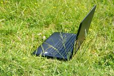 Free The Notebook On A Grass Stock Photos - 14923093