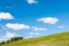 Free Summer Background Royalty Free Stock Photography - 14923877