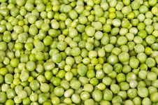 Free Fresh Peas Royalty Free Stock Photography - 14924077