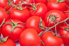 Free Full Frame Tomatos Stock Image - 14924491