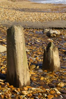 Free Wooden Beach Posts Stock Photo - 14925230