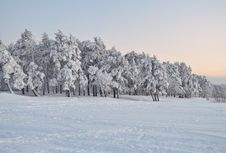 Free Winter Stock Photography - 14926002