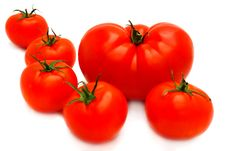 Free Tomatoes Group Stock Images - 14926184