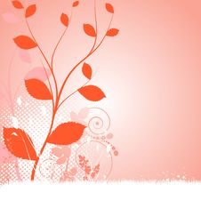 Free Floral Background Stock Photos - 14927643