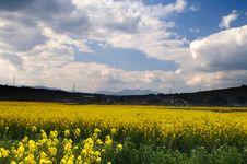 Free Yunnan Royalty Free Stock Image - 14928746