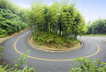 Free Bamboo And Curved Road Royalty Free Stock Image - 14937016