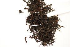 Free Tea Leaves Stock Images - 14932164