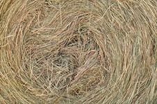 Hay Roll Royalty Free Stock Photo