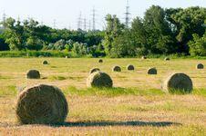 Free Rural Landscape Royalty Free Stock Image - 14933726