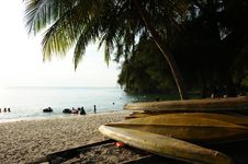 Free Beach Royalty Free Stock Photography - 14933737