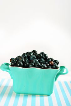 Free Bowl Of Blueberries On Lines Vertical Stock Photography - 14935192