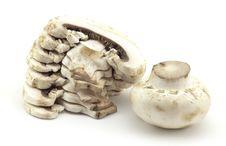 Free Mushrooms Royalty Free Stock Photography - 14936787