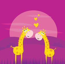 Free Two Yellow African Giraffes In Love Stock Images - 14937794
