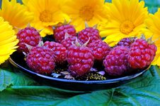 Free Ripe Appetizing Raspberry Stock Photos - 14938263
