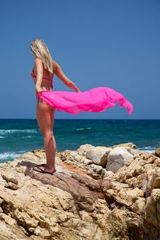 Free Woman On Exotic Beach Stock Image - 14938311