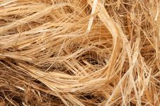 Free Dry Straw Stock Photo - 14939870