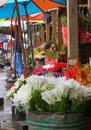Free Flower Market Royalty Free Stock Images - 14946369