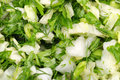 Free Background From Vegetarian Salad Royalty Free Stock Photo - 14947385