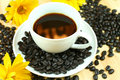 Free Black Coffee With Flowers Stock Photography - 14949192