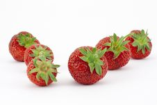 Two Rows Of Fruit Royalty Free Stock Photo