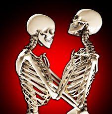 Free Tender Skeletons Royalty Free Stock Image - 14942626