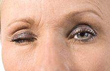Free Beautiful Female Eye Royalty Free Stock Photography - 14943707