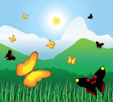 Free Motley Butterflies Fly On A Mountain Meadow Royalty Free Stock Photo - 14944935