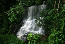 Free Waterfall In The Rain Forest Stock Image - 14946981