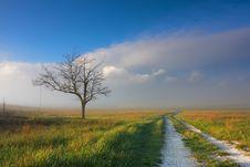 Free Landscape Stock Photo - 14949020