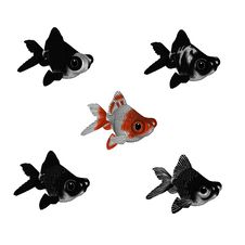 Free 3d Cartoon Goldfish Set 2 Royalty Free Stock Images - 14949629