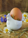 Free Egg In Eggcup Royalty Free Stock Photo - 14954375