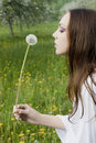 Free Young Girl In A Meadow With Dandelion In The Hands Royalty Free Stock Image - 14954556