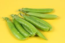 Free Green Pea Stock Image - 14951541