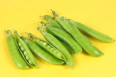 Free Green Peas Stock Photos - 14951583