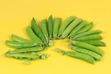 Free Green Pea Royalty Free Stock Image - 14951616