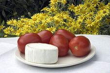 Free Cheese And Tomatoes Stock Photography - 14953832