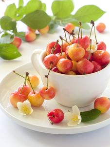 Free Cherry Royalty Free Stock Photography - 14954337