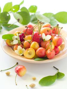 Free Cherry Stock Images - 14954354