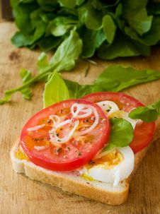 Free Sandwich With Tomato Royalty Free Stock Photography - 14954417