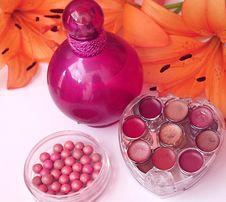 Free Make Up Set Royalty Free Stock Images - 14955019