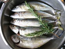 Fish In The Marinade II Stock Photography