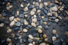Pebbles On The Ground Stock Photography