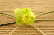 Free Flower Royalty Free Stock Photos - 14960928