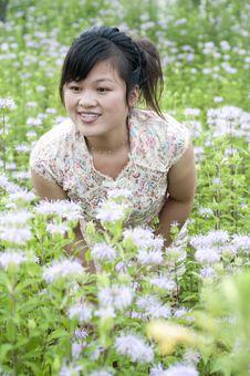 Free Aromatous Garden Royalty Free Stock Photo - 14963505
